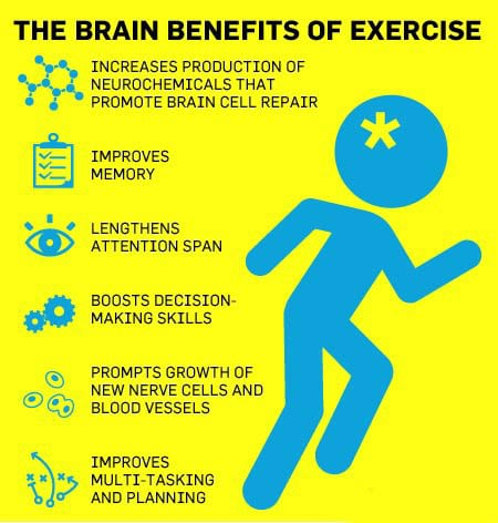 Benefits of exercise on your brain